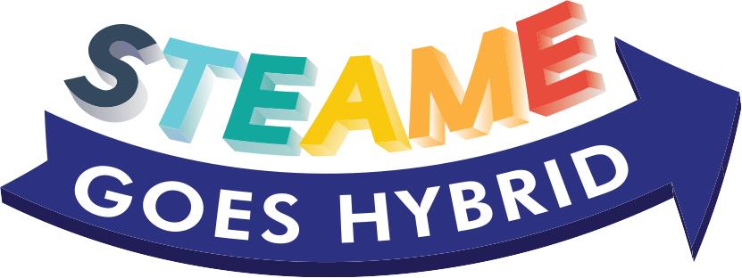STEAME-HYBRID